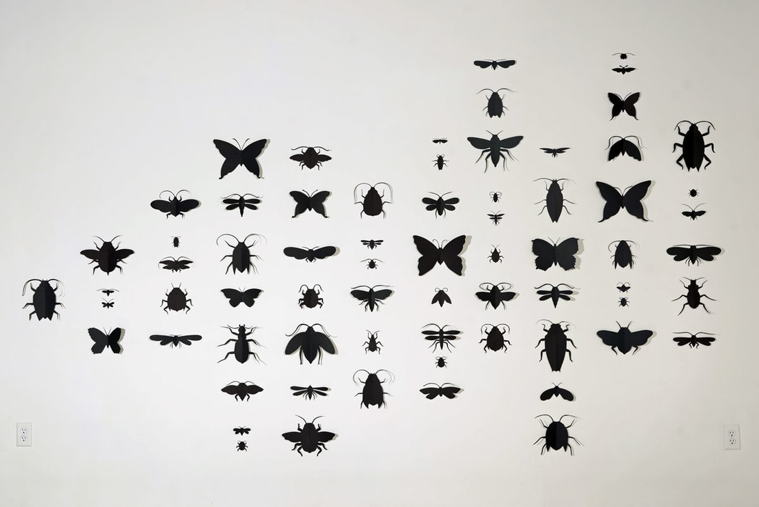 insects, bugs, art, paper