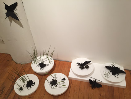 Mixed media - paper insects